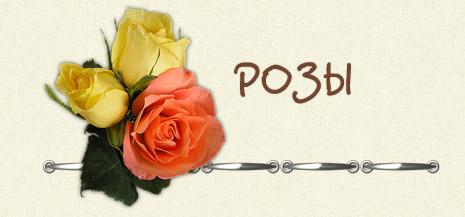 http://lenagold.ru/fon/flo/roz/tale/roz01.jpg